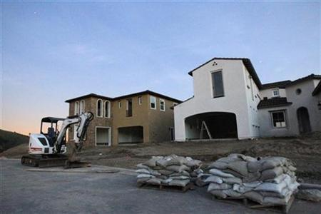 Homes under construction are seen in Walnut, California in this February 16, 2010 file photo. REUTERS/Mario Anzuoni
