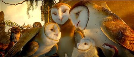 A scene from the film ''Legend of the Guardians: The Owls of Ga'Hoole''; a Warner Bros. release. REUTERS/Warner Bros. Pictures