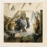 """<p>Иллюстрация к последней сцене """"Рождественская вечеринка кроликов"""" из книги """"Кролик Питер"""" Беатрикс Поттер на аукционе Sotheby's 17 июля 2008 года. 22 декабря 1943 года скончалась английская писательница, автор книг для детей Беатрикс Поттер. Она написала свою первую книгу, """"Кролик Питер"""", в 1900 году и после этого создала множество историй на основе наблюдений за природой у себя дома в Англии. REUTERS/Sotheby's/Handout</p>"""
