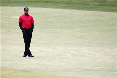 Tiger Woods stands on the 16th fairway before taking his shot during the final round of the Chevron World Challenge golf tournament in Thousand Oaks, California, December 5, 2010. REUTERS/Danny Moloshok