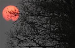 <p>L'année 2010 a été la plus chaude jamais enregistrée sur Terre depuis les premiers relevés en 1880, à égalité avec 2005. /Photo d'archives/REUTERS/Ricardo Moraes</p>