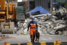 <p>Японский спасатель с собакой обследует руины обрушевшегося здания в Крайстчерче, 24 февраля 2011 года. Почти 100 человек погибли и более 200 числятся пропавшими без вести в результате сильного землетрясения, начавшегося в Новой Зеландии во вторник. REUTERS/Tim Wimborne</p>