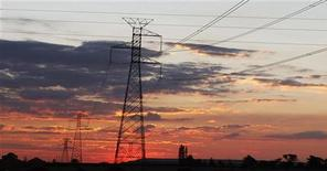 <p>Electricity pylons are seen as the sun sets in Soweto outside Johannesburg November 22, 2009. REUTERS/Siphiwe Sibeko</p>