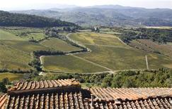 <p>A vineyard is seen at Nipozzano castle, one of Italy's Frescobaldi family estate, 30 km northeast of Florence in this picture taken October 8, 2010. REUTERS/Max Rossi</p>