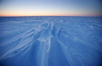 An Arctic adventure