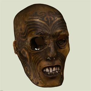 A three-dimensional view of a Maori head, realized during the head's modelling, is seen in this handout given by Rouen Museum on May 9, 2011. REUTERS/AFT 3DARTS/Sebastien VAREA/Handout
