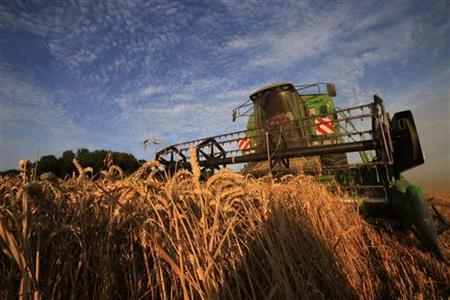 A farmer harvests a field of wheat in Hirson, northern France, August 6 2009. REUTERS/Pascal Rossignol