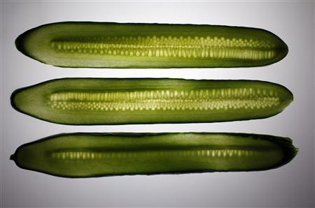 Slices of cucumber are pictured in this illustration photo taken in Berlin June 9, 2011. REUTERS/Pawel Kopczynski