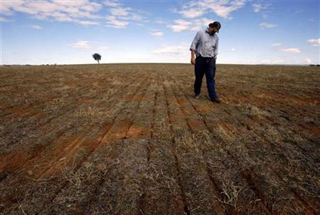 Farmer Ed Fagan inspects the rows of seeds sown by his Global Positioning System (GPS)-guided disc air seeder rig in a paddock on his property near the western New South Wales town of Cowra, 250 km (155 miles) west of Sydney, May 3, 2007. REUTERS/David Gray