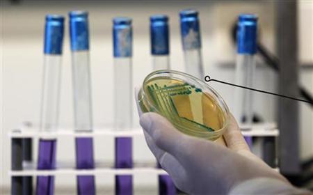 Gergana Krumova, a laboratory technician in a microbiological laboratory at the Bulgarian Food Safety Agency, works to isolate Escherichia coli (E.coli) bacteria strain in Sofia June 9, 2011. REUTERS/Stoyan Nenov