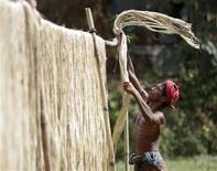 <p>A farmer dries stacks of jute in Manikganj September 19, 2011. Long a key export crop in impoverished Bangladesh, jute, a fibre derived from reed-like plants, fell from favour as demand for cheap synthetics soared. But now it is seeing a broad international renaissance for use in shopping bags to replace polythene, non-biodegradable and harmful to the environment. Picture taken September 19, 2011. REUTERS/Andrew Biraj</p>