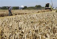 <p>La France et les Etats-Unis se disent prêts à réunir le Forum de réaction rapide du G20 en cas de dégradation sur les marchés des céréales et du soja en raison de la sécheresse qui sévit dans de nombreuses régions productrices. /Photo prise le 12 août 2012/REUTERS/Pascal Rossignol</p>