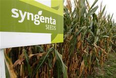 <p>Syngenta, leader mondial de l'agrochimie, relève son objectif de vente, de 22 à 25 milliards de dollars (19,3 milliards d'euros), de pesticides et semences pour ses huit cultures stratégiques d'ici à la fin de la décennie. /Photo prise le 18 septembre 2012/REUTERS/Arnd Wiegmann</p>