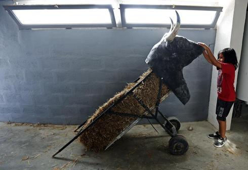 France's boy bullfighters