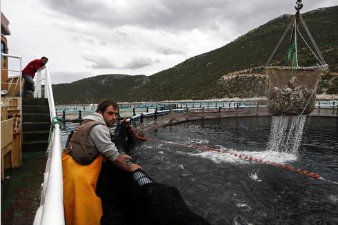 Fish farming in Greece