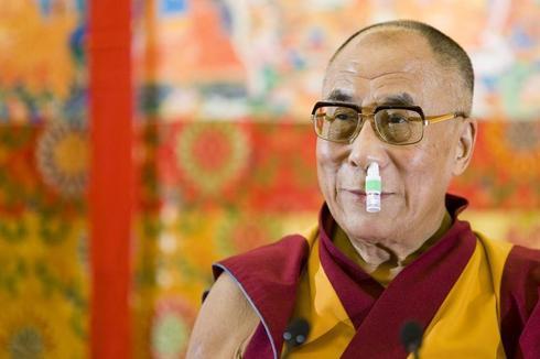 The Candid Lama