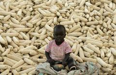 A child sits on top of maize harvested in Lilongwe Rural April 22, 2008. REUTERS/Siphiwe Sibeko