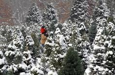 A man carries a child on his shoulders as they search for a Christmas tree to cut at the Rum River Tree Farm in Anoka, Minnesota, December 8, 2013. REUTERS/Eric Miller