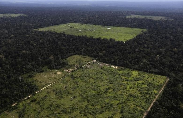 An aerial view shows a tract of Amazon rainforest which has been cleared by loggers and farmers for agriculture near the city of Santarem, Para State, April 20, 2013. REUTERS/Nacho Doce