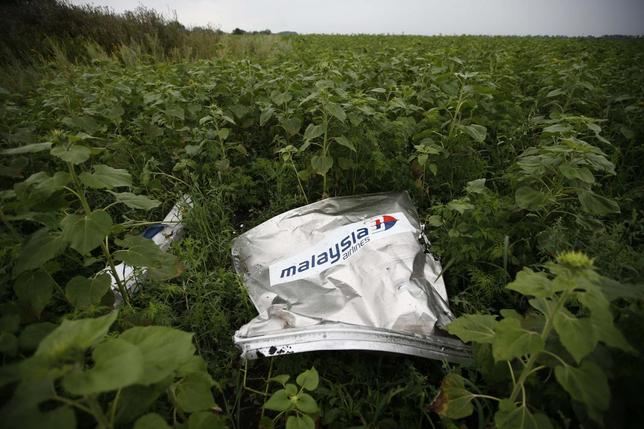 Debris from a Malaysian Airlines Boeing 777 that crashed on Thursday lies on the ground near the village of Rozsypne in the Donetsk region July 18, 2014. REUTERS/Maxim Zmeyev