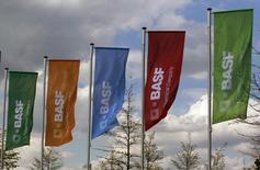 Флаги с логотипом BASF в Монхайме-на-Рейне 20 апреля 2012 года. Рост квартальной прибыли немецкой BASF, крупнейшей в мире химической компании по объему продаж, оказался ниже ожиданий из-за укрепления евро, сократившего прибыль от зарубежных операций. REUTERS/Ina Fassbender