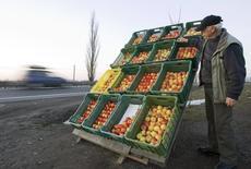 Торговец яблоками у польского села Ведрогов 1 марта 2009 года. Россия объявила о запрете импорта почти всех видов овощей и фруктов из Польши за нарушение сертификации и карантина через день после решения Евросоюза ввести первые экономические санкции против Москвы, обсуждающей полный запрет на поставку европейских фруктов. REUTERS/Vasily Fedosenko
