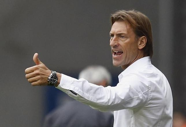 FC Sochaux's coach Herve Renard reacts during their French Ligue 1 soccer match against AS Monaco at the Auguste Bonal stadium in Sochaux October 20, 2013. REUTERS/Vincent Kessler