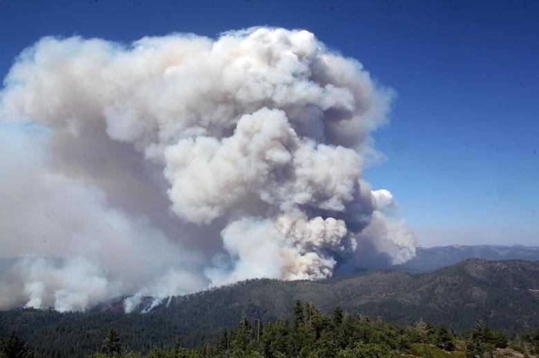 Smoke from the Rim Fire, viewed from the Pilot Peak Lookout, is shown in this undated United States Forest Service handout photo near Yosemite National Park, California, released to Reuters August 27, 2013. REUTERS/Mike McMillan/U.S. Forest Service/Handout