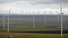Maior parque eólico do continente europeu, em Fantanele e Cogealac, a leste de Bucareste. 08/02/2013 REUTERS/Bogdan Cristel