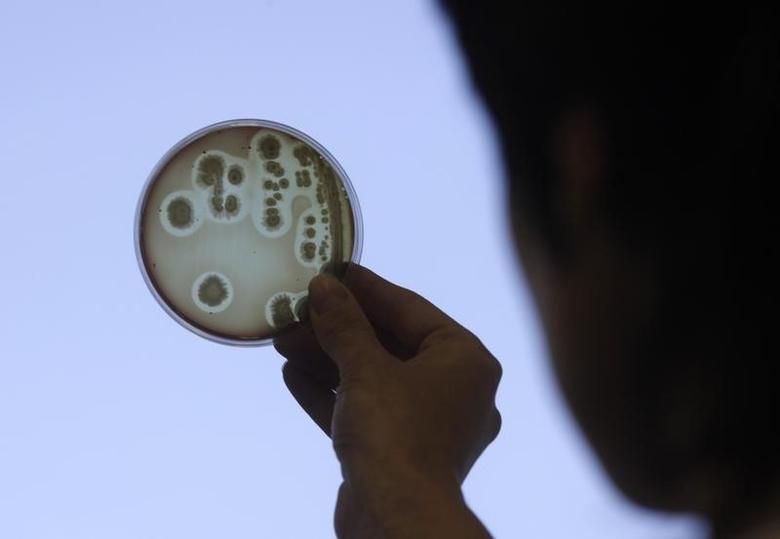 A specialist looks at a petri dish at a food safety institute in a file photo. REUTERS/Ints Kalnins