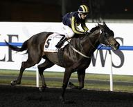Kieren Fallon, riding Krypton Factor of Britain, races to the finish line to win the sixth race during the 17th Dubai World Cup at the Meydan racecourse in Dubai March 31, 2012. REUTERS/Ahmed Jadallah