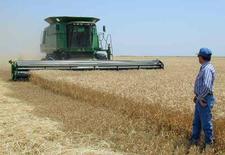 Мужчина смотрит на комбайн John Deere в Канзасе 20 июня 2001 года. Американский производитель сельхозтехники Deere & Co ожидает падения продаж в текущем квартале из-за снижения цен на зерно, которое заставляет фермеров откладывать покупку новых тракторов, комбайнов и другой техники.  REUTERS