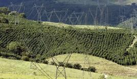 Torres de transmissão de energia numa fazenda de café em Santo Antônio do Jardim. 06/02/2014 REUTERS/Paulo Whitaker