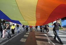 Participants march with big flag during a Gay Pride parade in Ljubljana June 27, 2009 .  REUTERS/Srdjan Zivulovic