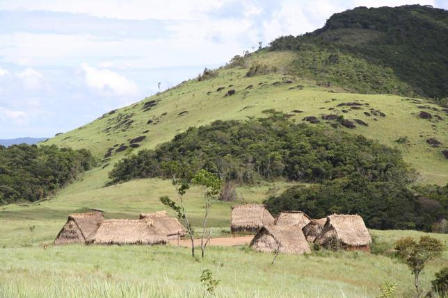 A group of huts in an isolated village inhabited by Yanomami Amerindians in a remote, mountainous area in southern Venezuela are seen in a 2009 handout picture courtesy of Oscar Noya-Alarcon. REUTERS/Oscar Noya-Alarcon/Handout via Reuters