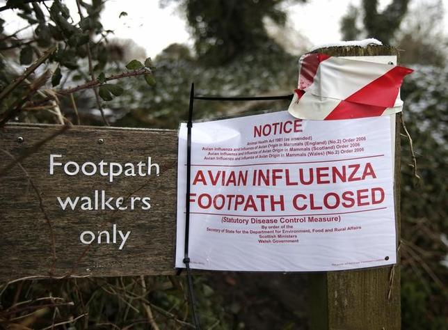 A sign at the edge of an exclusion zone warns of the closure of a footpath after an outbreak of bird flu in the village of Upham in southern England February 3, 2015.  REUTERS/Peter Nicholls