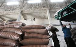 Funcionários carregam sacas de açúcar em usina em Campos dos Goytacazes. 10/11/2010 REUTERS/Sergio Moraes