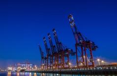Loading cranes are seen at a shipping terminal in the harbour in Hamburg September 18, 2014. Picture taken September 18.  REUTERS/Fabian Bimmer