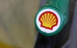 The Shell logo is seen on a pump at a Shell petrol station in London January 30, 2014. REUTERS/Suzanne Plunkett