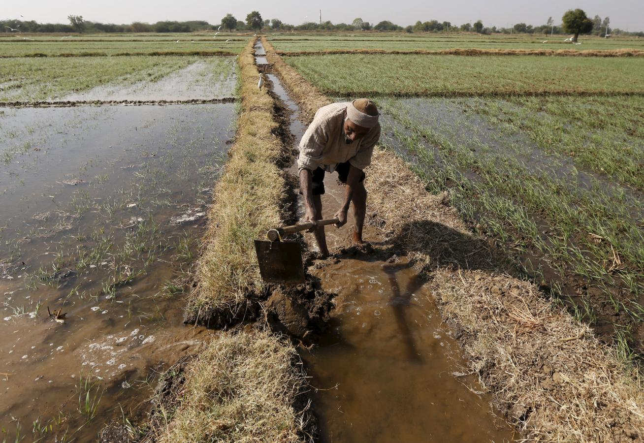 Modi seen pivoting from roads to fields in next budget