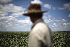 Fazendeiro Rudelvi Bombarda observa sua plantação de soja em Barreiras, na Bahia. 06/02/2014 REUTERS/Ueslei Marcelino