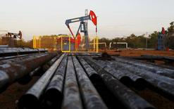 Unidades de bombeo de petróleo, vistas en Lagunillas, en el estado de Zulia, Venezuela. 22 de diciembre de 2015. El consumo de crudo en China creció un 2,5 por ciento el año pasado, debido a un fuerte uso de gasolina y kerosene que desafió a una economía en desaceleración y a una debilitada  demanda de otras materias primas como el carbón y el acero. REUTERS/Isaac Urrutia