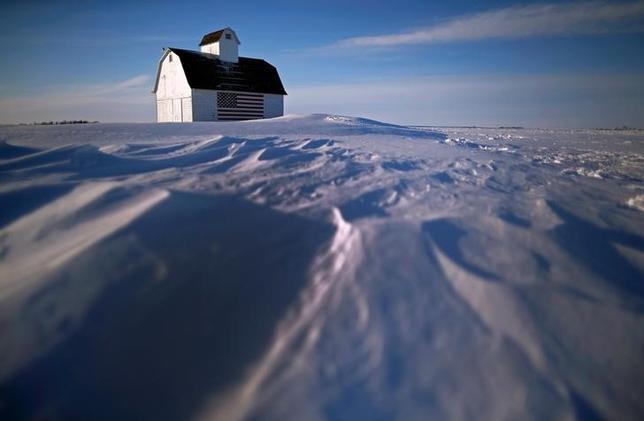 1月22日、北半球の広い範囲に、ようやく遅い冬がやってきた。だが、急落する原油市場にとって、期待していたほどの救いにはならないかもしれない。写真は16日、雪で覆われた土地にある米国旗がペイントされた納屋。米アイオワ州で撮影(2016年 ロイター/Jim Young)