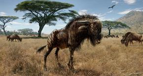 An artist's interpretation of Rusingoryx atopocranion on the Late Pleistocene plains of what is now Rusinga Island, Lake Victoria is seen in an undated illustration courtesy of Todd S. Marshall. Scientists said on February 4, 2016, that fossils unearthed in Kenya showed that a horned, hoofed grass-eater called Rusingoryx that roamed Africa's savannas tens of thousands of years ago boasted an odd nasal structure unlike any other mammal, past or present.  REUTERS/Todd S. Marshall/Handout via Reuters