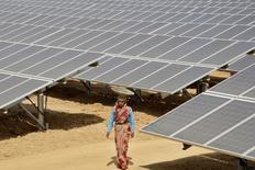A worker walks through the installed solar modules at the Naini solar power plant in the northern Indian city of Allahabad March 21, 2012.  REUTERS/Jitendra Prakash