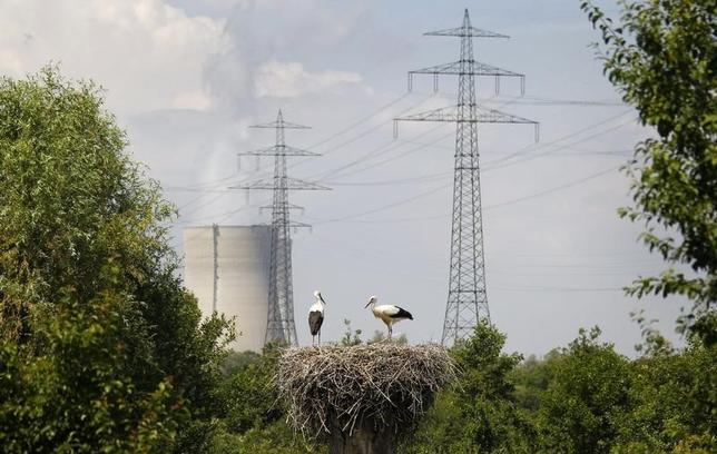Two storks stand in their nest near cooling towers for the EnBW nuclear power plant in Phillipsburg, southwest Germany, in this July 5, 2011 file photo.   REUTERS/Kai Pfaffenbach