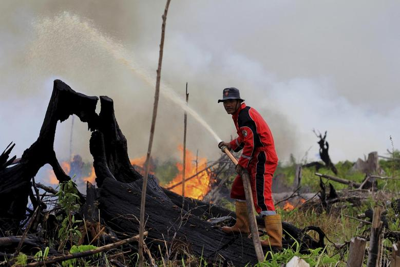 A fire fighter tries to put out a fire on land intended for a palm oil plantation in the village of Tanjung Palas, Dumai, Riau province, Sumatra, Indonesia in this photo taken by Antara Foto on March 5, 2016. REUTERS/Aswaddy Hamid/Antara Foto