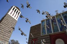 Pigeons fly outside the Nda Mariam Orthodox Cathedral in Eritrea's capital Asmara, February 16, 2016. Eritrea's capital city boasts one of the world's finest collections of early 20th century architecture, which the authorities want declared a UNESCO World Heritage Site. REUTERS/Thomas Mukoya