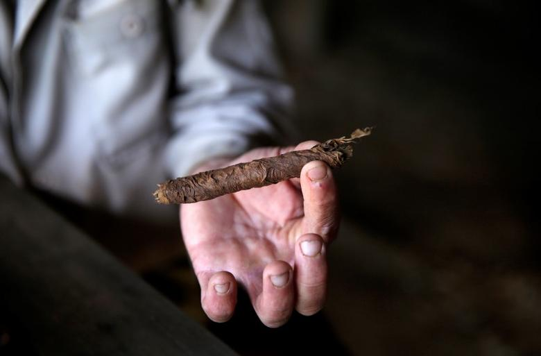 A farmer shows a cigar after rolling it at a plantation in the valley of Vinales, in the western Cuban province of Pinar del Rio January 26, 2015. Picture taken January 26, 2015.REUTERS/Pilar Olivares
