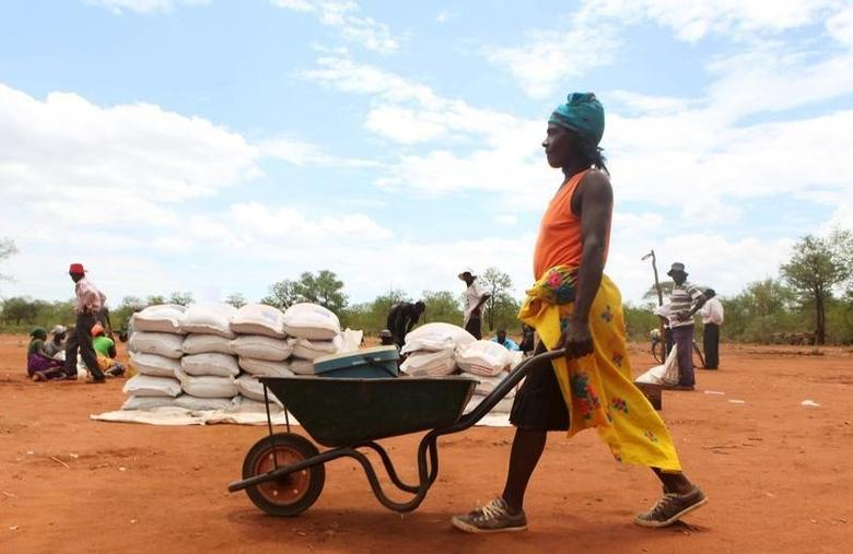 A villager uses a wheelbarrow to collect a monthly food ration provided by the United Nations World Food Programme (WFP) in Masvingo, Zimbabwe, January 25, 2016.  REUTERS/Philimon Bulawayo